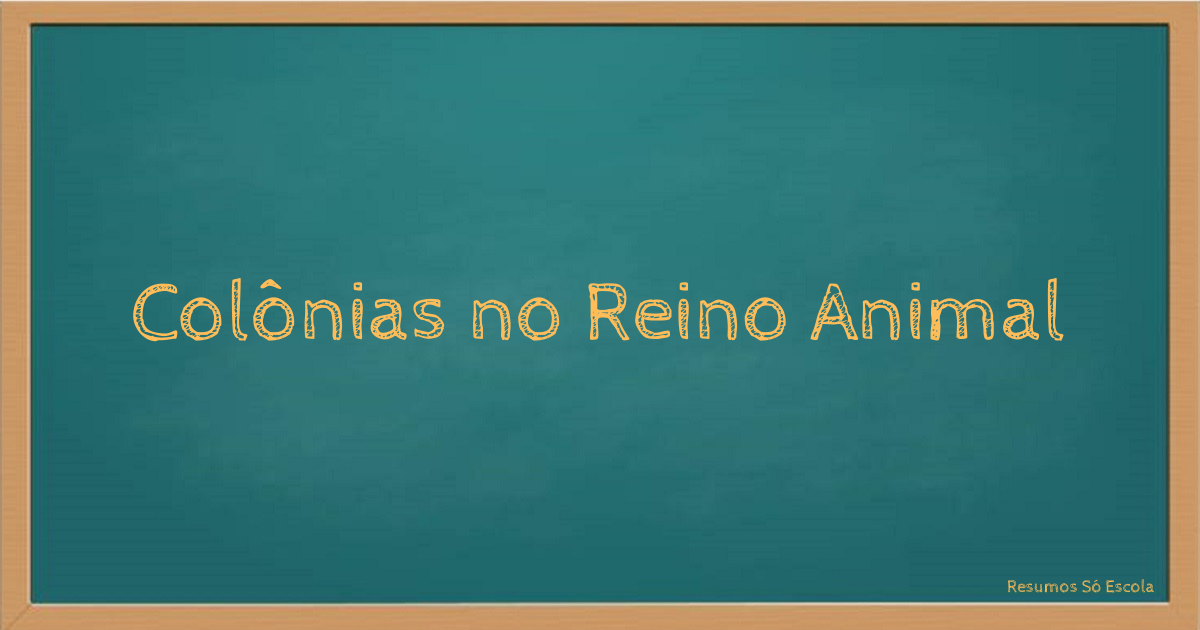 Colônias no Reino Animal
